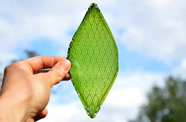 plantas-artificiales-combustibles-luz-solar-co2-2