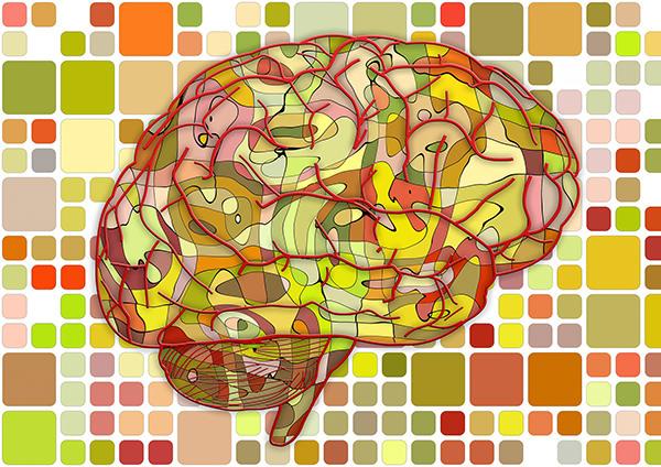 que-produce-azucar-cerebro-2