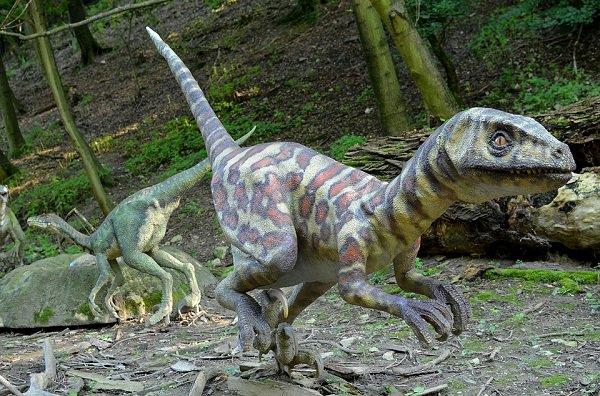 curiosidades-dinosaurios-4