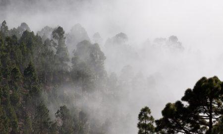 humedad relativa de un ambiente