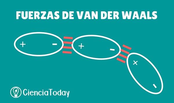 Qu Son Las Fuerzas De Van Der Waals